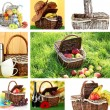Stock Photo: Collage of picnic baskets close-up