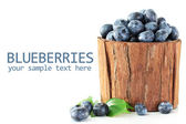 Blueberries in wooden basket isolated on white — Stock Photo