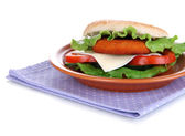 Tasty sandwich with cutlet, on color plate, on napkin, isolated on white — Stock Photo
