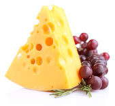 Piece of cheese with grape and rosemary, isolated on white — Stock Photo