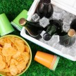 Ice chest full of drinks in bottles on grass background — Stock Photo #40850003