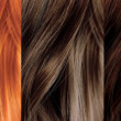 Hair Color Samples — Stock Photo