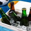 Stock Photo: Ice chest full of drinks in bottles on color carpet background