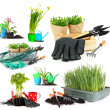 Collage of gardening isolated on white — Stock Photo