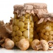 Delicious marinated mushrooms in the glass jars and raw champignons isolated on white — 图库照片