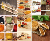 Collage of different aroma spices — Stock Photo