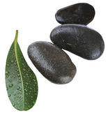 Spa stones with green leaf, isolated on white — Stock Photo