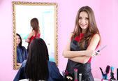 Beautiful girl hairdresser and client in beauty salon — ストック写真
