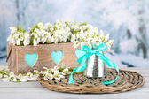 Beautiful spring composition with snowdrops  — Stock Photo