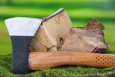 Ax and firewood on green grass, on nature background — Stock fotografie