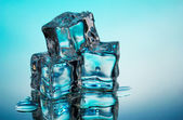 Melting ice cubes on blue background — Stok fotoğraf