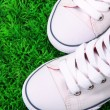 Beautiful gumshoes on green grass background — Stock Photo #41684233