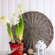 White hyacinth in pot with decorative lantern on table on wooden background — Stock Photo #41687259