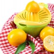 Citrus press and lemons isolated on white — Stock Photo