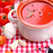 Stock Photo: Tasty tomato soup and vegetables, close up