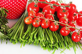 Beautiful green onion and tomatoes cherry isolated on white — Stock Photo