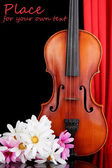Classical violin on curtain background — Stockfoto