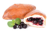Fresh baked pasties with currant isolated on white — Stockfoto