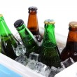 Stock Photo: Ice chest full of drinks in bottles, isolated on white