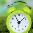 Green alarm clock on grass on natural background — Zdjęcie stockowe