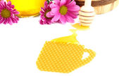 Honeycomb and honey isolated on white — Stock Photo