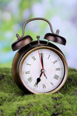 Retro alarm clock on grass on natural background — Stockfoto
