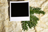 Beautiful yew twig and empty photo paper on old paper background — Stock Photo