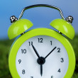 Green alarm clock on grass on natural background — Stok Fotoğraf #42010399