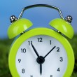 Green alarm clock on grass on natural background — Foto Stock #42010399