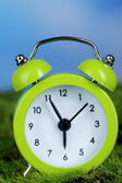 Green alarm clock on grass on natural background — Stock fotografie