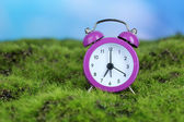 Purple alarm clock on grass on natural background — Zdjęcie stockowe