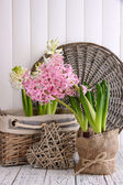 Hyacinth in pot with decorative heart on table on wooden background — Stock Photo