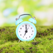 Stockfoto: Blue alarm clock on grass on natural background