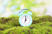 Blue alarm clock on grass on natural background — Stock fotografie