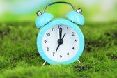 Blue alarm clock on grass on natural background — Foto Stock