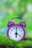 Purple alarm clock on grass on natural background — Stok fotoğraf