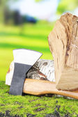 Ax and firewood on green grass, on nature background — Stockfoto