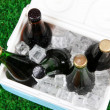 Ice chest full of drinks in bottles on grass background — Stock Photo #42328601