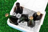Ice chest full of drinks in bottles on grass background — Stock Photo