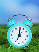 Blue alarm clock on grass on natural background — Stok fotoğraf