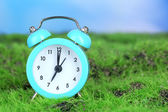 Blue alarm clock on grass on natural background — 图库照片