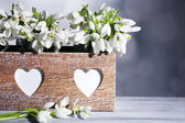 Beautiful snowdrops in wooden crate on grey background — Stock Photo
