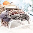 Winter still life on sled, on winter background — Stock Photo