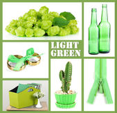 Collage of photos in green color — Foto Stock