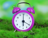 Purple alarm clock on grass on natural background — Stock Photo