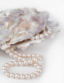 Shell with pearls, isolated on white — Photo