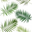 Collage of beautiful palm leaves isolated on white — Stock Photo #42754635