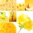 Collage of photos in yellow colors — Stock Photo #42754739