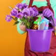 Housewife holding bucket with cleaning equipment on color background. Conceptual photo of spring cleaning. — Stock Photo