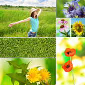 Collage of summer time — Stock Photo